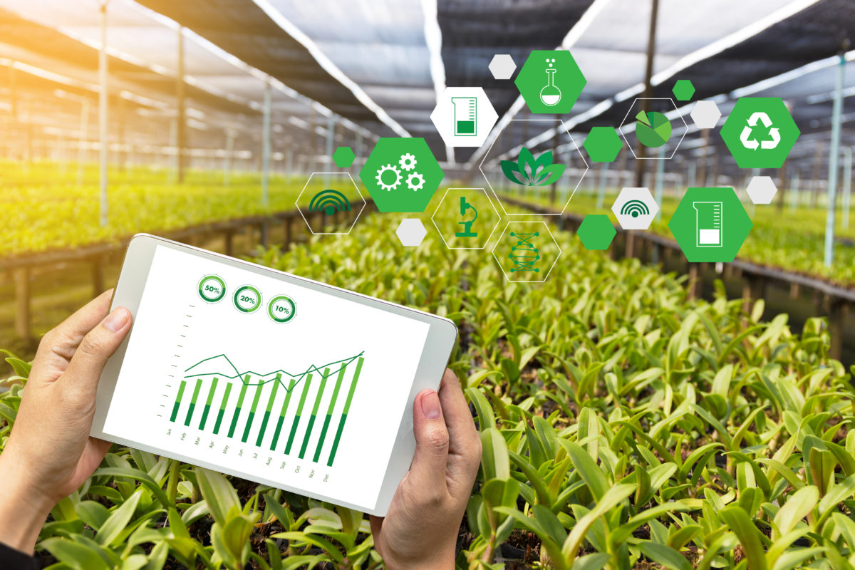 innovation in agriculture